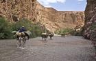 las-gargantas-del-rio-mgoun-marruecos_2613791-1280x768