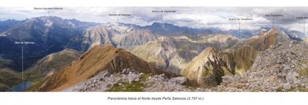 Sabocos Pico Verde